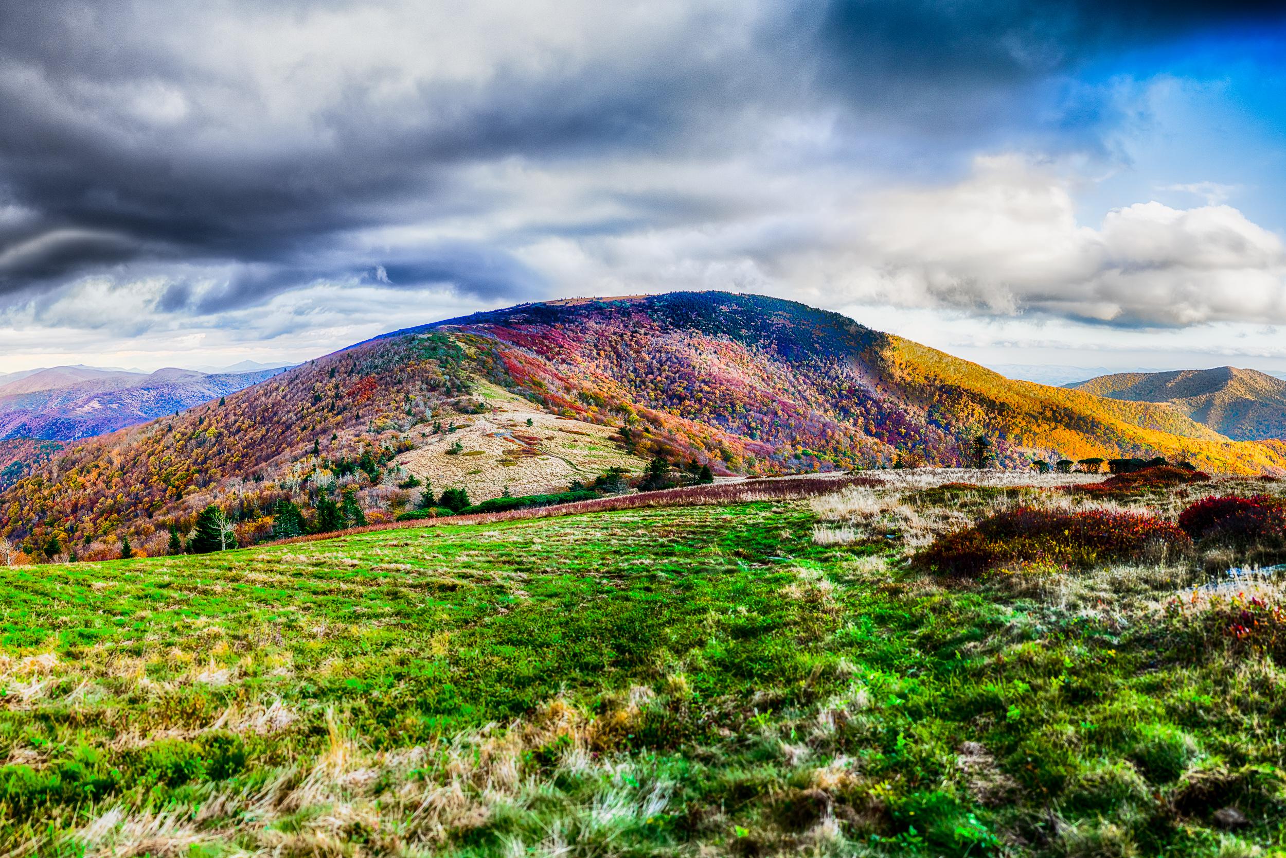 Roan Mountain (2x3)